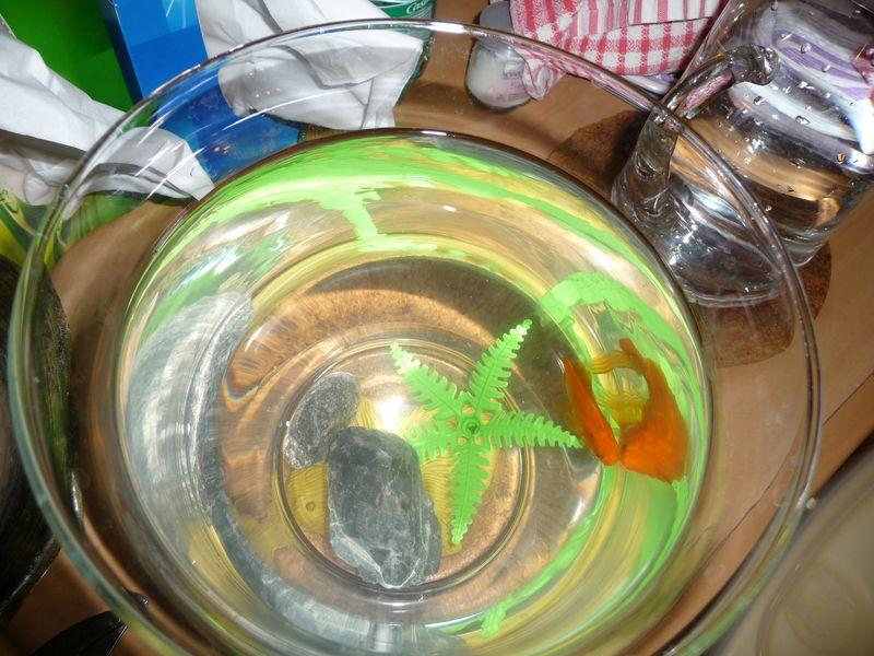 24 Mars 2011 003 fish