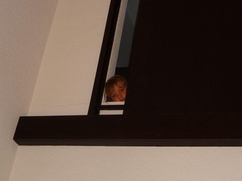 1er Aout 2011 002 E door window